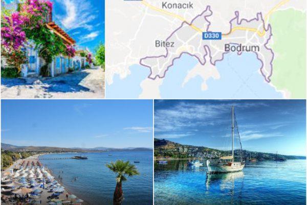 Türkbükü ve Ortakent Ulaşım Hizmeti